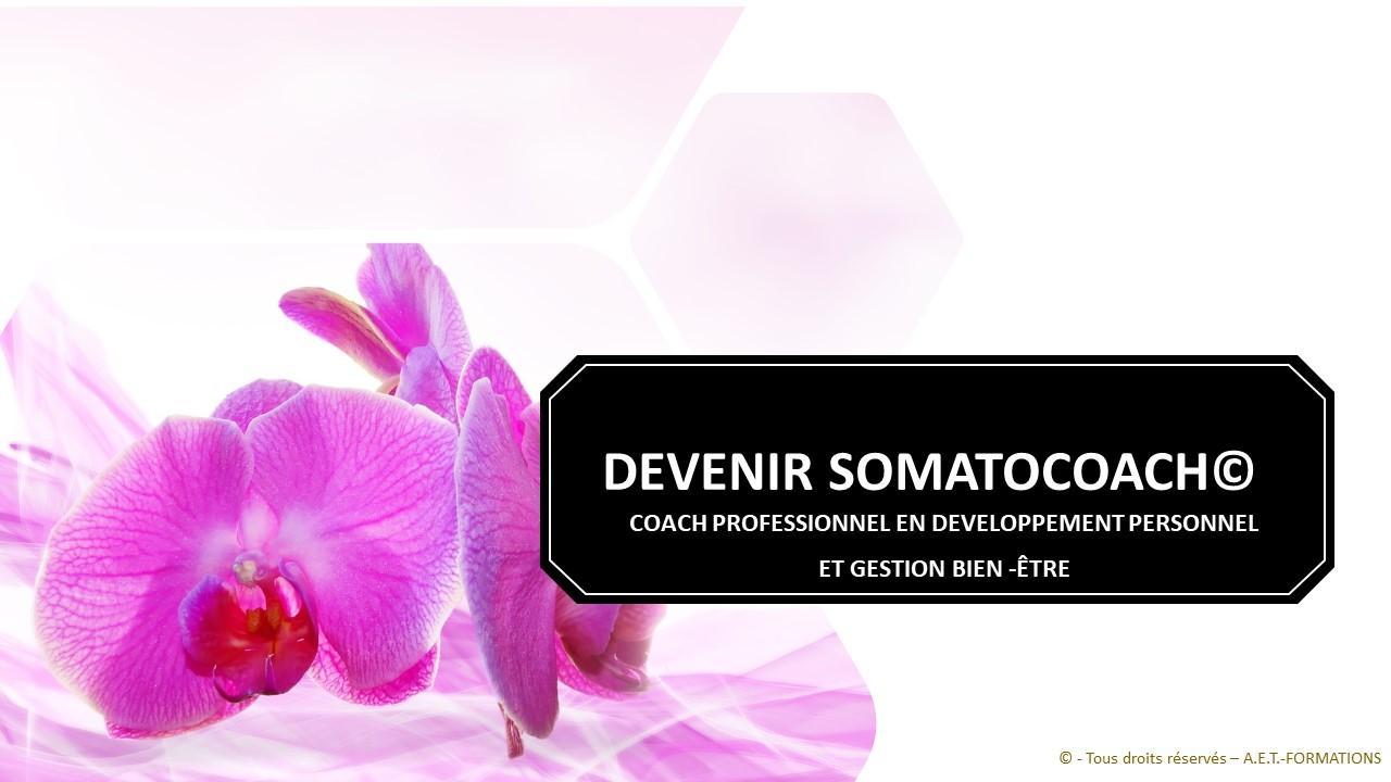 FORM SOMATO 2020 2021