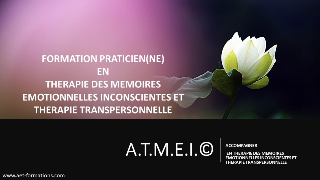 ATMEI TRANSP 2020